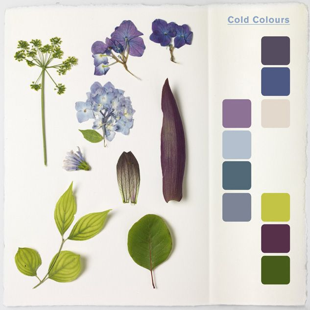 Inspirational: Herbarium by Massimo Gardone